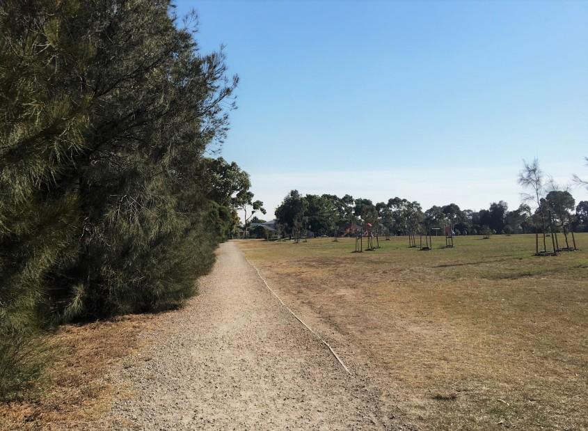 Newport park run